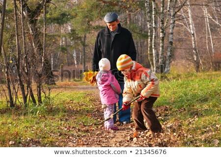 Lasu jesienią drzewo strony drewna portret Zdjęcia stock © Paha_L