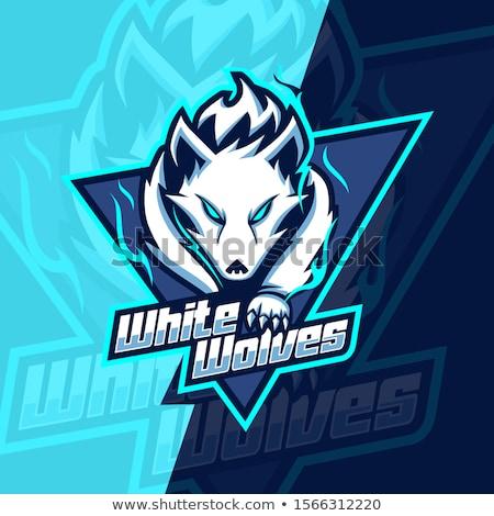 Stock foto: Wolf Mascot Vector Graphic