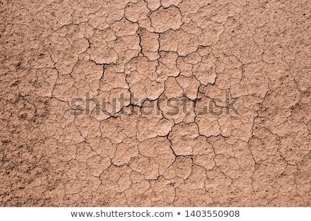 высушите землю закат горячей пейзаж небе Сток-фото © aelice