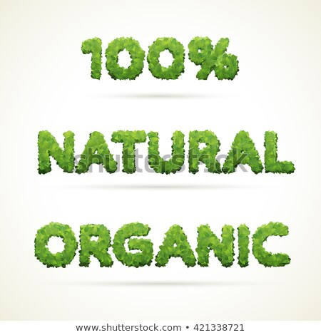 Organic - vector word made from fresh green leafs Stock photo © orson