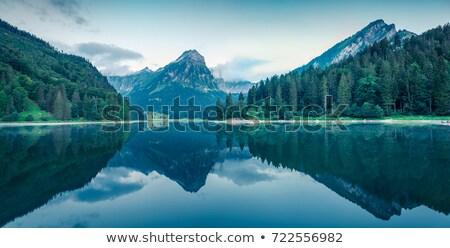 víz · zöld · természet · textúra · absztrakt · egészség - stock fotó © sweetcrisis
