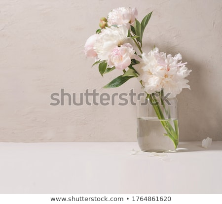pink peonies in glass jar stock photo © sandralise