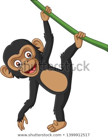 Csimpánz rajz étel mosoly boldog erdő Stock fotó © dagadu
