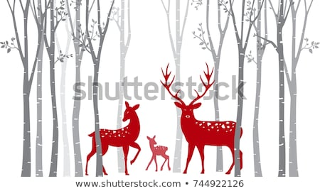 birch trees with christmas deers, vector  Stock photo © beaubelle