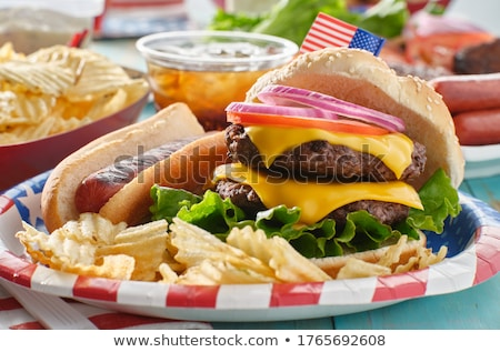 Hamburger hotdog witte plaat rundvlees garnering Stockfoto © avdveen