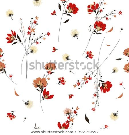 kırmızı · çiçekler · model · soyut · doku · vektör - stok fotoğraf © robertosch