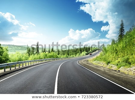 Road and blue sky Stock photo © Forgiss