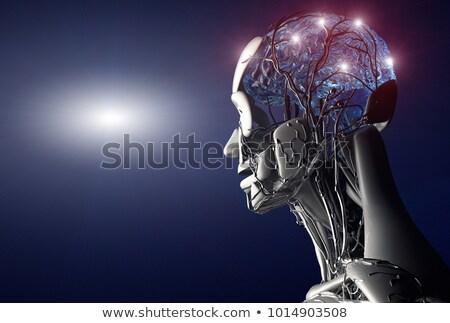 Сток-фото: Brain Intelligence Discovery
