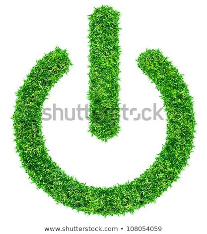 grow button   green stock photo © iqoncept
