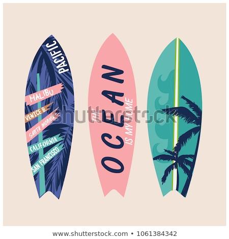 deska · surfingowa · surfowania · palm · kwiaty · morza · lata - zdjęcia stock © nicky2342
