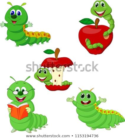 Boldog zöld rovar olvas könyv színes Stock fotó © derocz