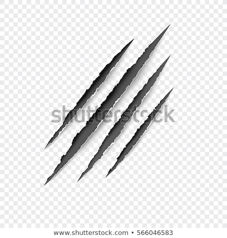 Stock photo: claw scratches vector