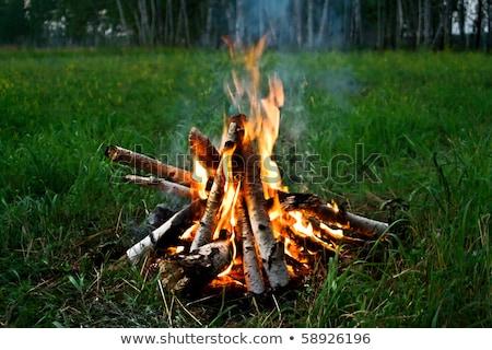 Acampamento fogo madeira luz fumar Foto stock © marcelozippo
