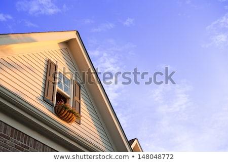 ablak · fából · készült · zsalu · ház · textúra · terv - stock fotó © ozgur
