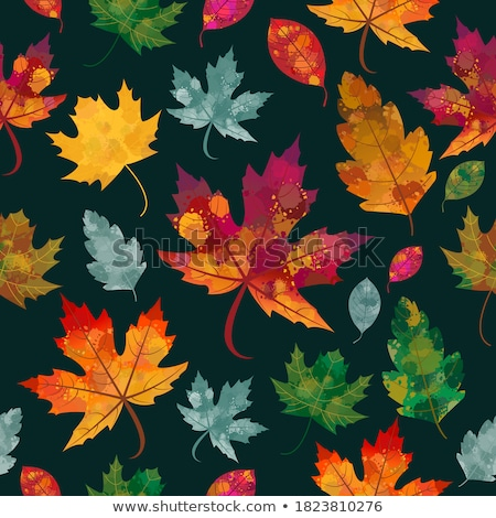 Seamlessly autumnal maple leafs pattern. Stock photo © Leonardi