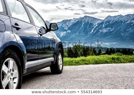 Stockfoto: Grunge · berg · weg · najaar · kleuren · voorjaar
