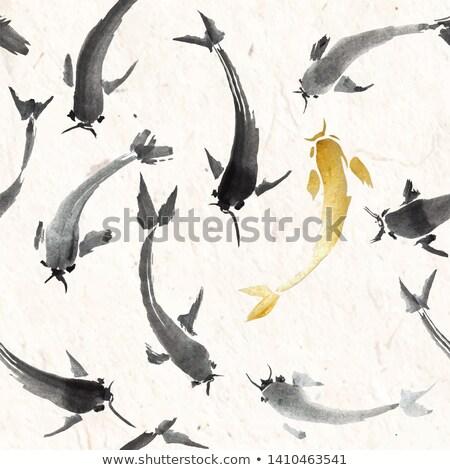ırkçılık · akvaryum · balığı · el · grup · takım · yarış - stok fotoğraf © elmiko
