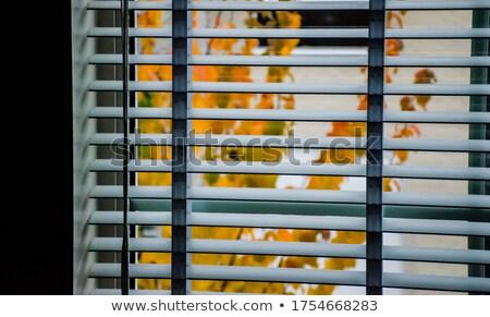 ablak · alkotóelem · terv · fal · absztrakt · otthon - stock fotó © Toltek