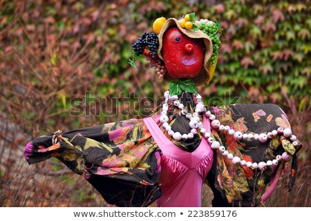 Scarecrow woman Stock photo © searagen