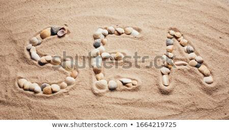 Herz Symbol Muscheln Sand Meer Strand Stock foto © Mikko
