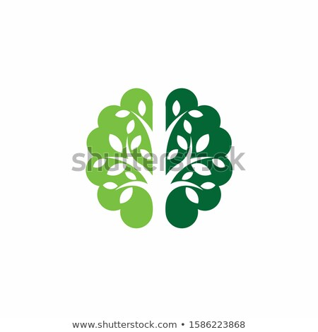 green brain tree vector stock photo © beaubelle
