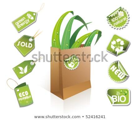 Eco idée autocollants affaires Photo stock © Lota