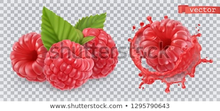 Framboos vruchten natuurlijke product groene najaar Stockfoto © Aleksa_D