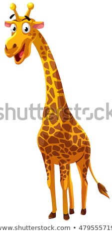 Souriant cartoon girafe illustration animaux isolé Photo stock © liliwhite