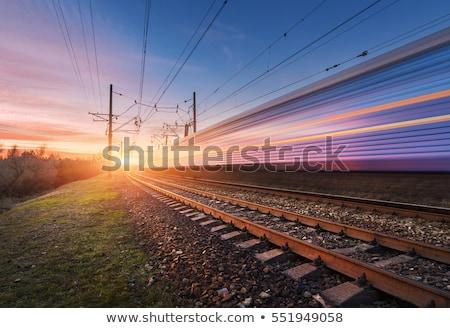 trein · beweging · spoorweg · track · zonsondergang - stockfoto © elwynn