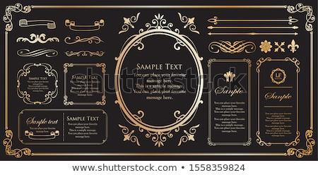 Ensemble exclure lignes cadres design Photo stock © leonido
