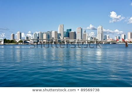 Miami skyline at daytime  Stock photo © meinzahn