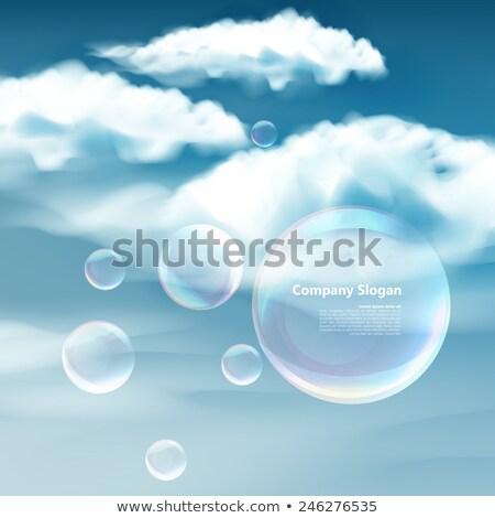 Temizlemek mümkün kadın zemin hayvan çizim Stok fotoğraf © tiKkraf69