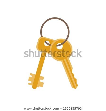 vector padlock and key illustration stock photo © mr_vector
