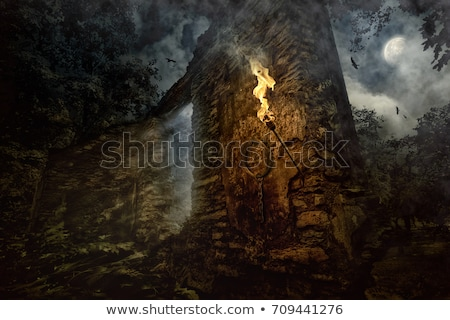 Dark Mysterious Castle at Moon background with Black Birds Stock photo © ankarb