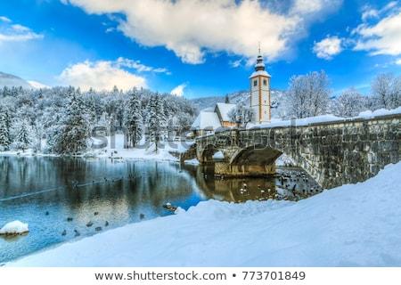 озеро · Словения · красивой · закат · небе · лес - Сток-фото © fesus