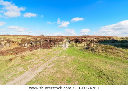 Stone monolith over blue sky with white clouds Stock photo © gavran333