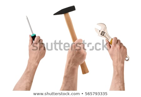Male worker's hand holding Screwdriver Stock photo © stevanovicigor