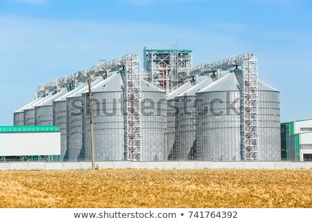 Towers of grain drying enterprise at sunny day Stock photo © sarymsakov