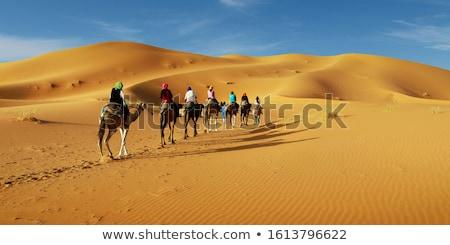 Viaggio deserto deck sedie top duna Foto d'archivio © ajlber