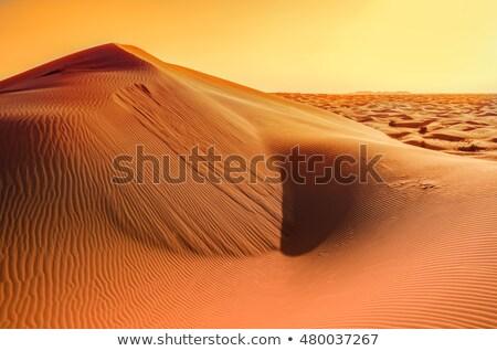 Laranja areia colina impressão cena fita Foto stock © xuanhuongho