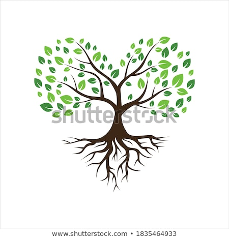 tree with hearts and roots stock photo © blumer1979