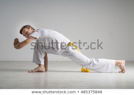 lány · capoeira · táncos · pózol · fehér · képzés - stock fotó © fanfo