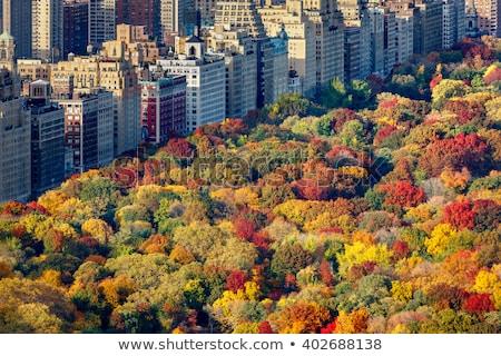 Запад · сторона · осень · фотография · Центральный · парк · небе - Сток-фото © rmbarricarte