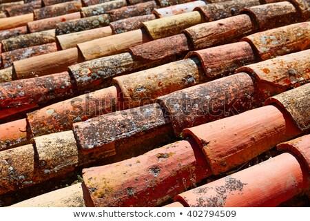 padrão · azul · telhado · azulejos · fundo · urbano - foto stock © lunamarina
