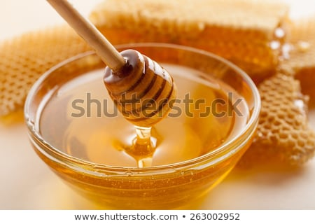 Honeycomb with honey and bees Stock photo © jordanrusev