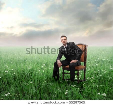 Zakenman vergadering weide denken hemel werk Stockfoto © Paha_L