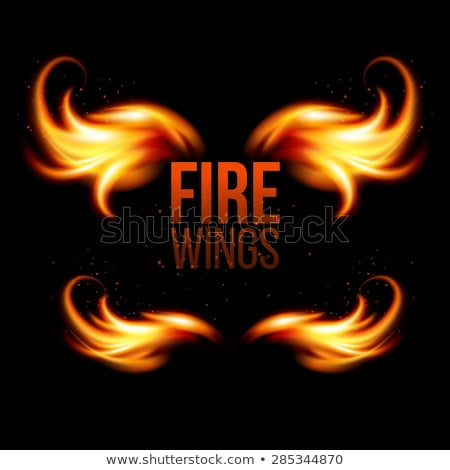 wings in flame and fire on black eps 10 stock photo © beholdereye