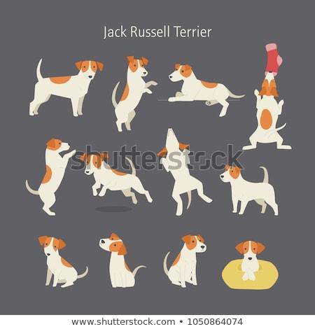 puppy · vector · karakter · vergadering · cute · kleur - stockfoto © MaxPainter
