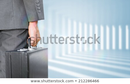 composite image of rear view of businessman holding a briefcase stock photo © wavebreak_media
