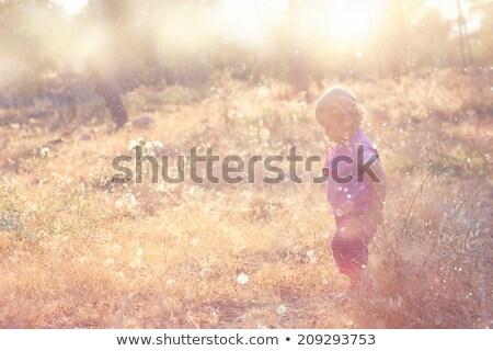 dziecko · charakter · trawy · lata · dziedzinie - zdjęcia stock © zurijeta